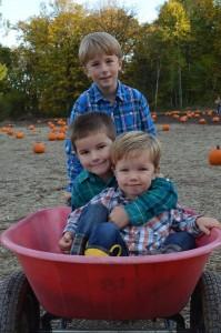 Halloween-pumpkin1 (2)