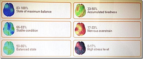 サンプル脳の状態